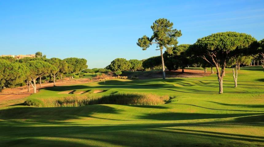 Pinhal Clube de Golfe - Dom Pedro Golf